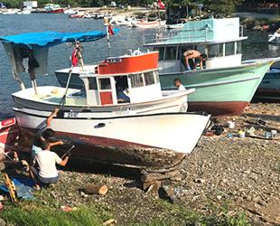 Karadenizli balıkçılar, sezon başlamadan palamuttan umudunu kesti