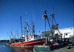 Balıkçılar AB'ye Savaş Açtı