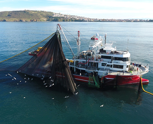 Denizlerde av yasağı 1 Eylül'de sona eriyor