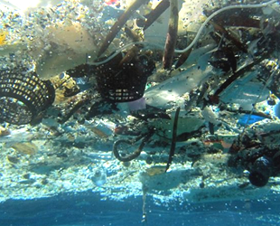 Deniz kirliliğinin yüzde 70'i karadan geliyor