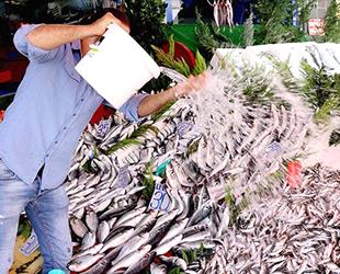 Balıkçılar 'Vira Bismillah' dedi, tezgahlar şenlendi