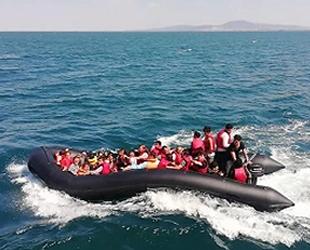 Edirne'de 70 düzensiz göçmen yakalandı