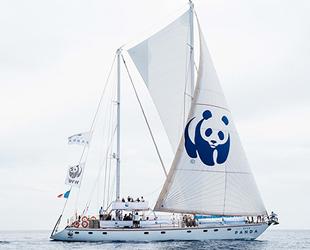 'Blue Panda' isimli tekne, Türkiye'ye geldi