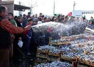 Zonguldaklılar Hamsi Festivali ile coşacak