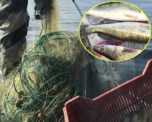 Eğirdir Gölü'nde kaçak sudak balığı avcılığına 3 bin 292 lira ceza kesildi