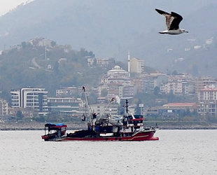 Giresunlu balıkçılar, av yasağının Ekim'de kalkmasını istiyor