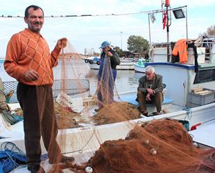 Yalovalı balıkçılar, yunuslardan dert yanıyor