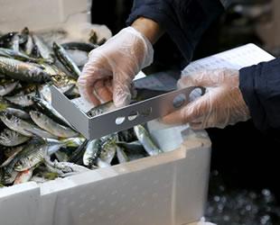 Ankara'da balıkçılara yönelik şafak vakti denetim gerçekleştirildi