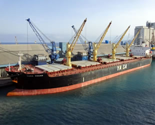 'Yasa Özcan' gemisi, 10.6 milyon dolara Gurita Lintas Samudera şirketine satıldı