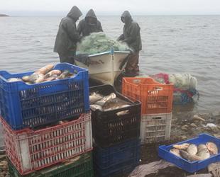 İznik Gölü, nesli tükenen kepekleme balığı kaynıyor