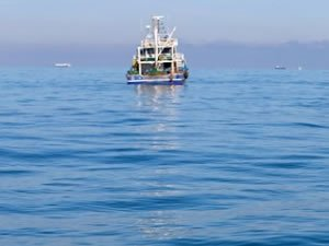 Kaybolan balıkçıyı arama çalışmaları sürüyor