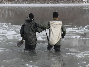 Buz tutan Murat Nehri balıkçılara geçim kapısı oldu
