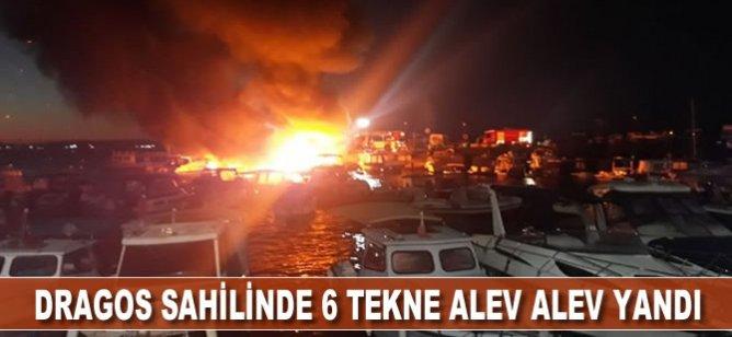 Kartal Dragos sahilindeki 6 tekne alev alev yandı