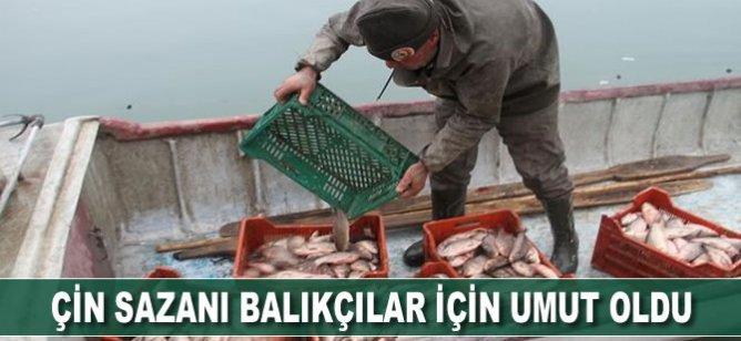 Çin sazanı balıkçılar için umut oldu