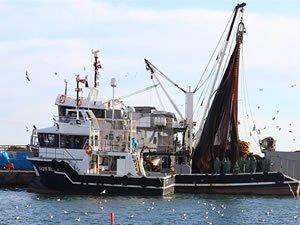 Marmara'da umduğunu bulamayan balıkçılar yüzünü Karadeniz'e çevirdi