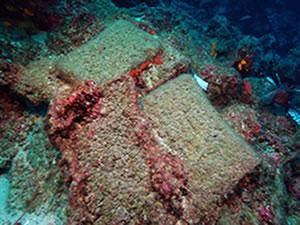 Dünya'nın en eski batağında bakır külçe bulundu