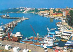 Sinop balıkçı barınağı pırıl pırıl oldu