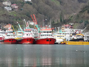 Karadeniz'de yurt dışından dönen balıkçılar koronavirüs tedbirleri nedeniyle karantina altına alındı