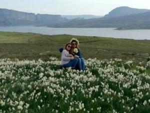 Atatürk Baraj kenarında doğal nergis bahçesi