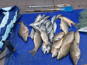 1 Nisan'da avlanma yasağı başlıyor