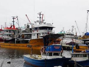Trabzon'da 300 balıkçı karantinaya alındı