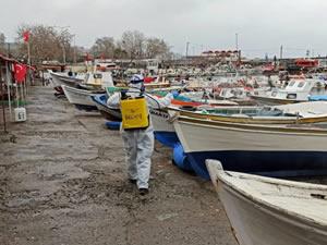 Tekirdağ balıkçı barınağında koronavirüs tedbirleri