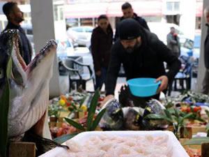 Balık halinde çeşit arttı, fiyat ucuzladı