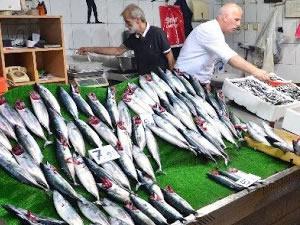 Balıkesir'de balıkçılara korona virüs cezası