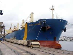 Manta Denizcilik, M/V FRIEDA SELMER isimli kuruyük gemisini satın alarak filosuna kattı