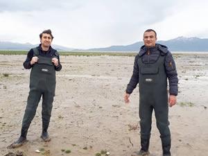 Erçek Gölü'ndeki inci kefalleri için önlemler artırıldı