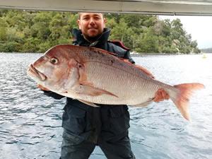 Amatör balıkçısının oltasına dev Trança takıldı
