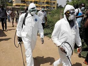 Balık işçisi, 533 işçiye koronavirüs bulaştırdı