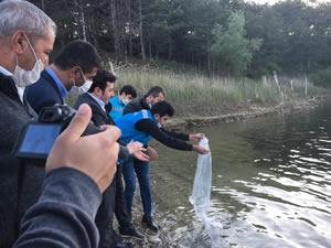 Pazarlar göletlerine 10 bin adet sazan balığı yavrusu bırakıldı