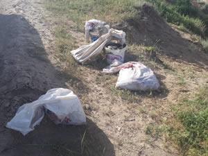 Van'da kaçak avlanmış 2 ton balığa el konuldu