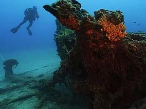 Gelibolu dalış turizminin gözdesi olacak
