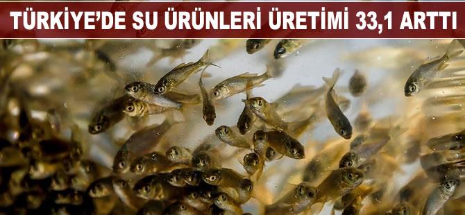 Türkiye'de su ürünleri üretimi 2019 yılında yüzde 33,1 arttı