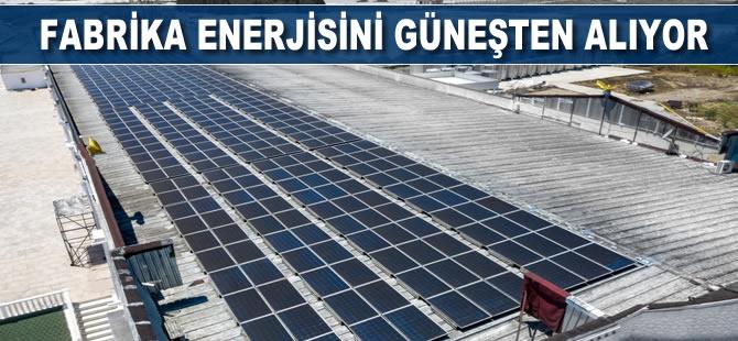 Fabrika, enerjisini güneşten alıyor