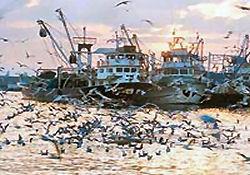 Türk balıkçılar 45 gündür rehin