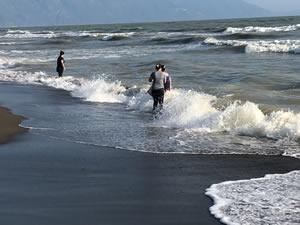Hatay'da sahile çok sayıda ölü balık vurdu