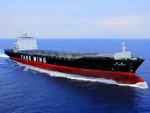 Yang Ming, Doğu Akdeniz - Amerika servislerini genişletti