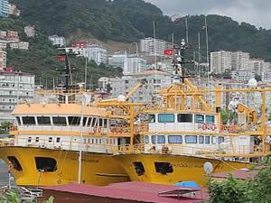 Balıkçılar, av sezonu için 1 Eylül'ü bekliyor