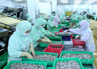 Akdeniz'in su ürünleri ihracatı % 33 arttı