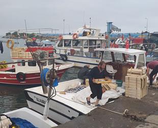Düzceli balıkçılar yeni sezonda elleri dolu dönüyor