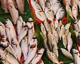Gaziantep'te balık tüketimi arttı