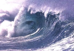 Işıkara: Tsunami Tehlikesi yok