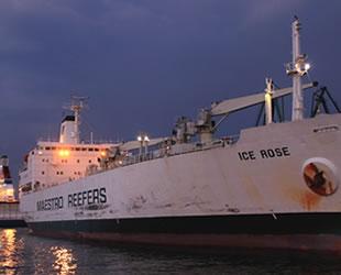 KAZANETS isimli Rus fırkateyni ile ICE ROSE isimli kargo gemisi çatıştı