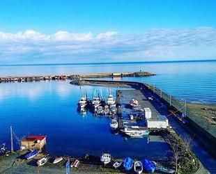 Türkeli Limanı, balık sezonunu erken kapattı