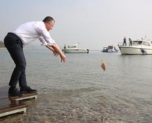 Balıklar, bu kez Darıca sahilinden denize bırakıldı