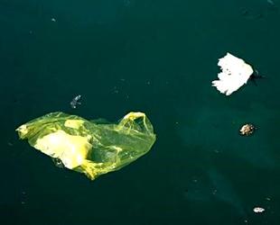 Deniz çöpleri ve mikroplastik kirliliği için çalışma başlatıldı