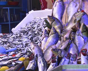 Balık fiyatları tezgahlarda ikiye katlandı